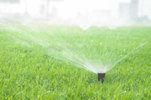 Irrigation System Installation and Repair Services in Mercer Island