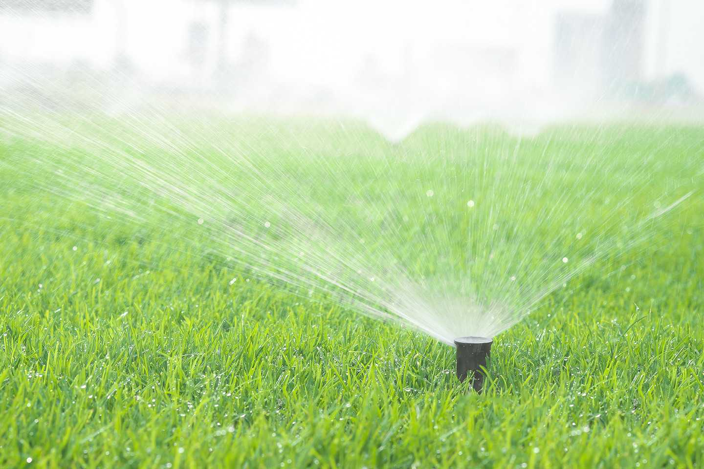 Get The Help You Need With Irrigation System Installation & Repair Services In Edmonds