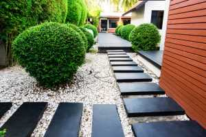 Enjoy The Benefits Of A Professional Landscaping Company In Kenmore