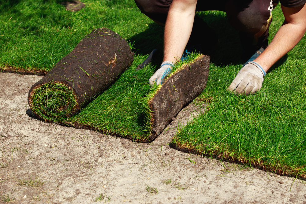 Call A SOD & Seed Lawn Installation Company In Monroe Any Time Of Year For A Consultation