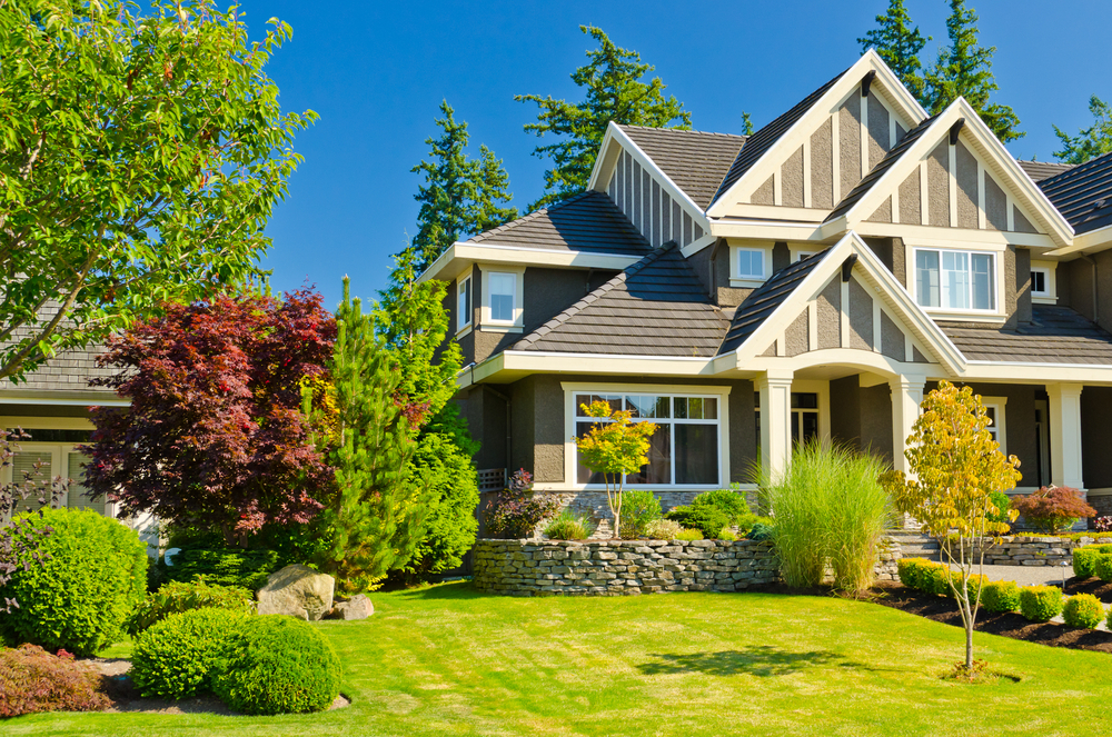 Aeration, Weed & Overseed Lawn Service In Kirkland Can Help Your Lawn Look Lush And Green