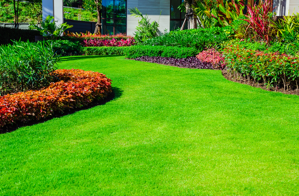 Let Landscapers In Kenmore Achieve Your Outdoor Oasis Goals