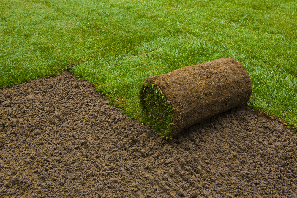 Enhance Your Landscape With Help From Our SOD & Seed Lawn Installation Company In Marysville