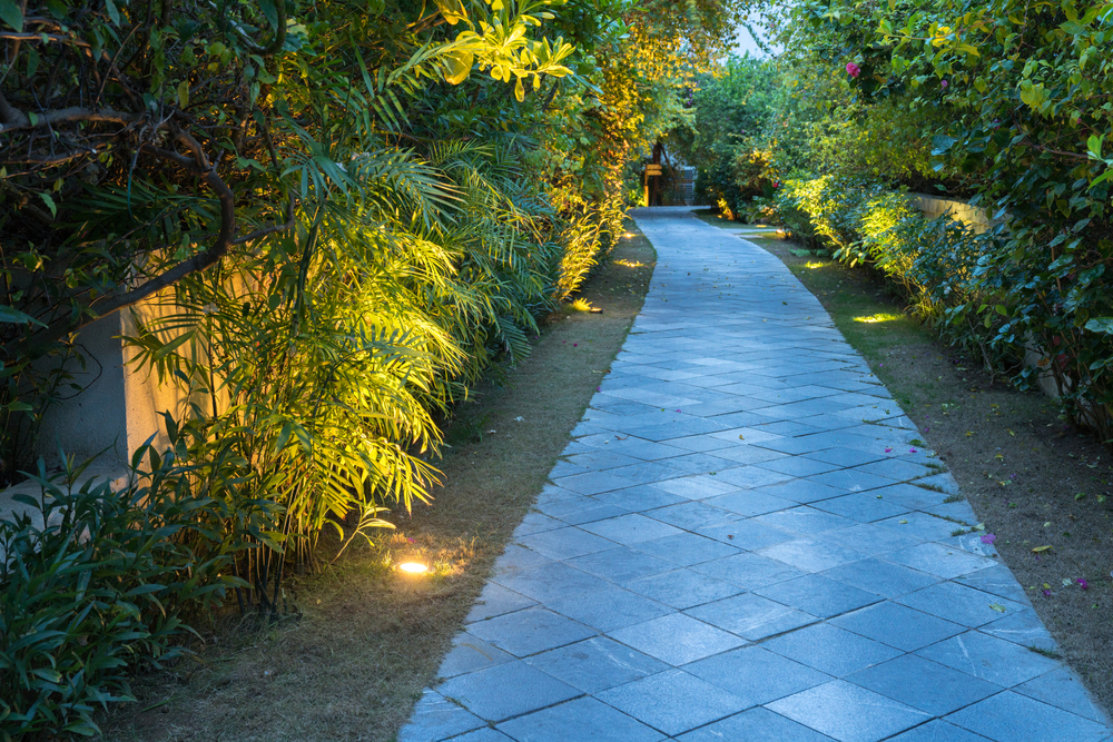Add Pops Of Illumination To Your Exterior Landscape And Tree Lighting In Everett