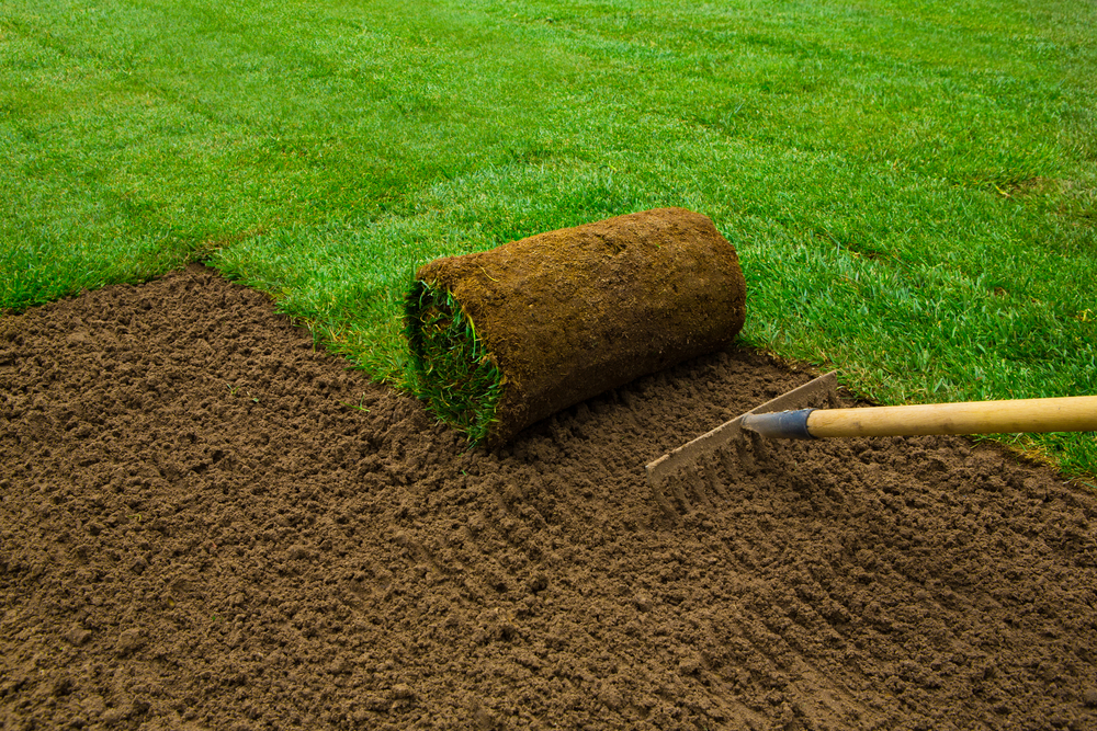 We Can Help With SOD & Seed Installation At Your Lake Stevens Property