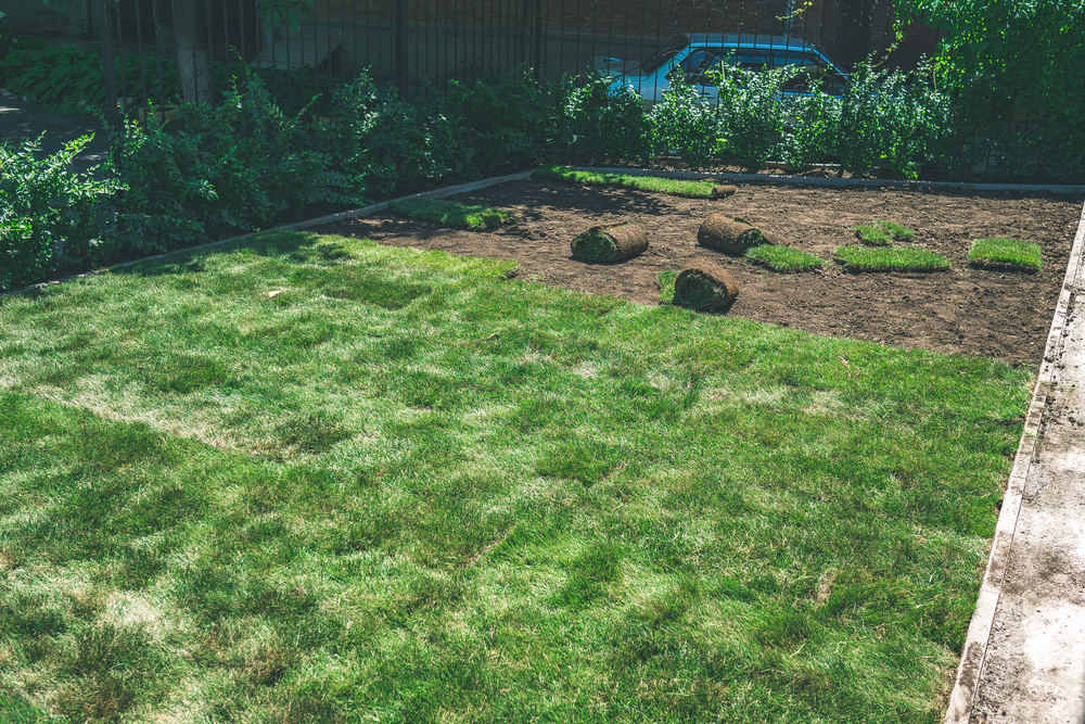 Call A Dependable Lawn Installation Company In Lynnwood For Your Sod & Seed Needs