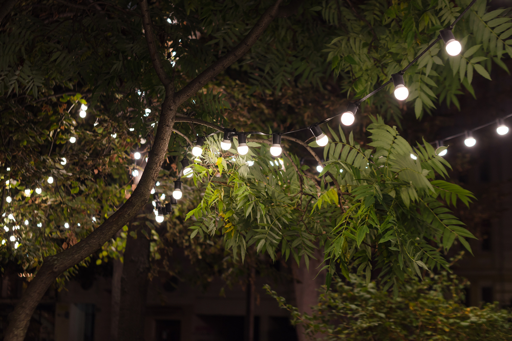 Would You Like Permanent Festive String Lighting At Your Marysville Home?