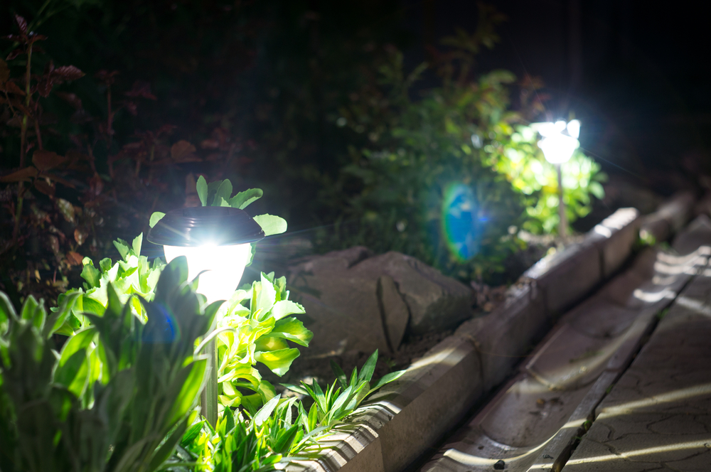 Talk With Us About Path Lighting In Woodinville